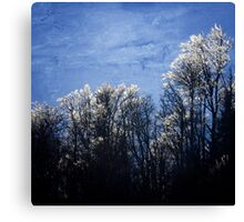 Frost Ends Canvas Print