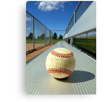 Play Ball! Canvas Print