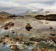 Scottish Landscape by Linda  Morrison