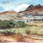 A farm fence by Maree  Clarkson