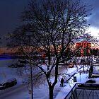 Ah Winter! by Nathalie Chaput