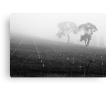 Trees in the Fog II Canvas Print