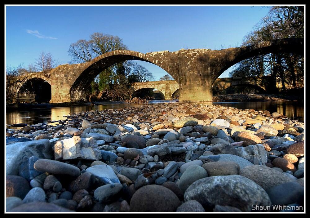 Stones eye view!! by Shaun Whiteman