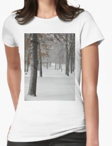 Snowy day in New York City  Womens Fitted T-Shirt