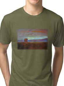 Ngorongoro Sunset Tri-blend T-Shirt