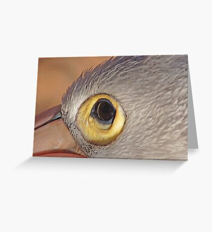 The Eye of the Pelican, Monkey Mia, Western Australia Greeting Card