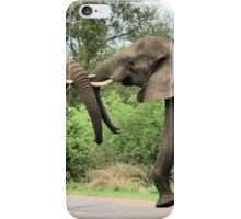INTERACTION - THE AFRICAN ELEPHANT – Loxodonta Africana - Afrika Olifant iPhone Case/Skin