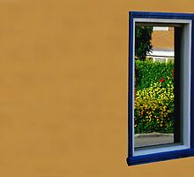 Subiaco Window by tamanna