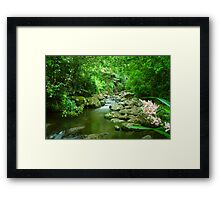 Hanging out at Picnic Rock Framed Print