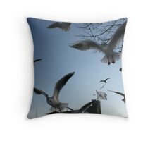 Seagulls getting a Boxing Day Feast! Throw Pillow