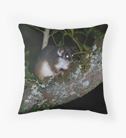 Baby Ringtail Throw Pillow