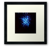 Blooming Light — (Hive 2) Framed Print