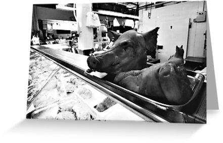 Pig's Head by Donncha O Caoimh