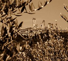 San Gimignano by Nigel Fletcher-Jones