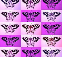 Pink and Purple butterflies by cathyjacobs