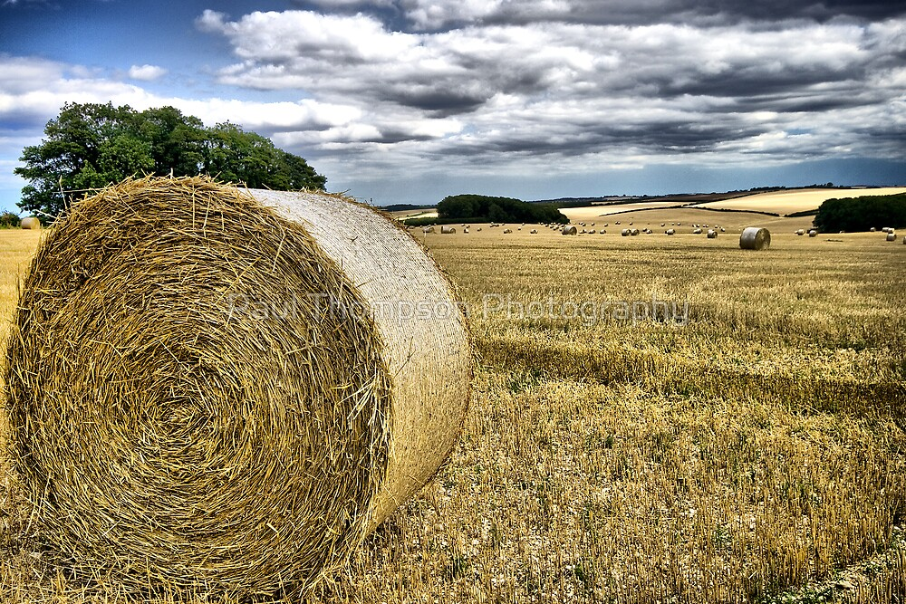 Harvest by Paul Thompson Photography