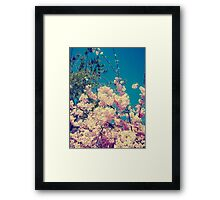 Pink, Green, and Blue Framed Print