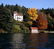 autumnal palette by sstarlightss