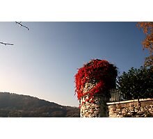 a corner of the Isle of San Giulio Photographic Print