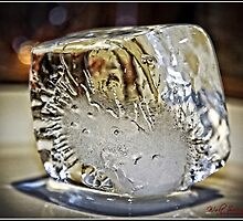 Ice Cube - 2 by Wolf Sverak