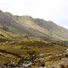 Driving through Snowdonia by kalaryder