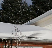 Snow covered roof by ArtBee