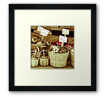The Price is Right  Framed Print