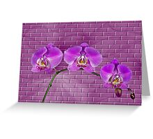 Against The Wall Greeting Card