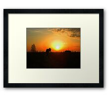 Photographers Passion Framed Print