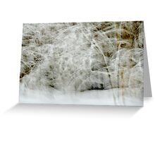 Snowstorm in Valserine forest Greeting Card