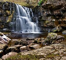 East Gill Force, Keld, Yorkshire Dales by Steve  Liptrot