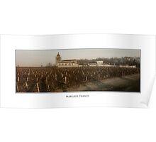 Margaux Vineyard Poster