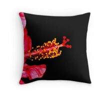 Side on Stunner Throw Pillow
