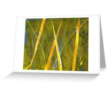 Native Grasslands 3A Restoring Biodiversity 1 of 3 Acrylic Monoprint Greeting Card