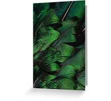 Green Feathers Greeting Card