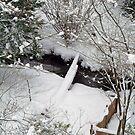My SnowWhite Greenbelt ! by Merilyn