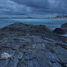 Sea Shell by GabrielK