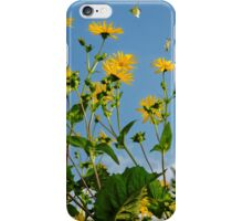 Spring Is In The Air #2, Oxford, England iPhone Case/Skin
