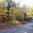 Autumn Road by Happywoman