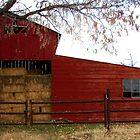 Arizona Red Barn by Kimberly Miller