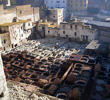 Tannery in Fez by J-N-F