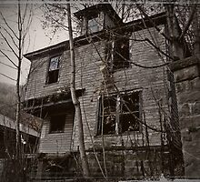 Well Built Porch  by Paul Lubaczewski