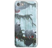 African grey Parrots. Flying free iPhone Case/Skin