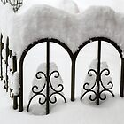 Snow Fence by Lynn Gedeon