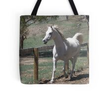 Arabian Princess Sonata in Motion Tote Bag