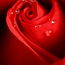 Red Swirl by Sharon Johnstone