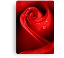 Red Swirl Canvas Print