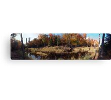Autumn in Gatineau Park , No. 2 Canvas Print