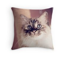Chrissy Throw Pillow