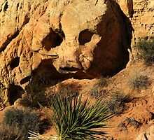 Stoned - Valley of Fire by Gili Orr